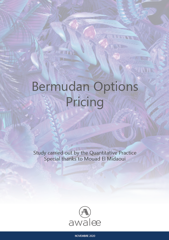 Bermudan Options Pricing
