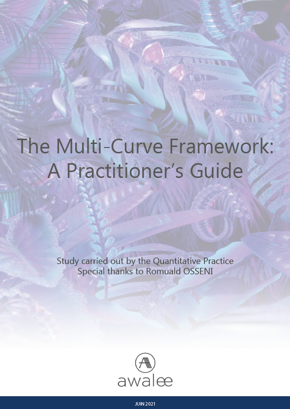 The Multi-Curve Framework: A Practitioner's Guide